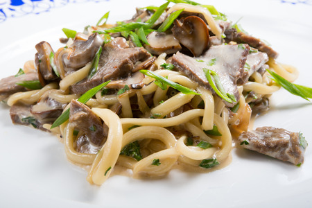 Beef noodles with leek served on a white plate