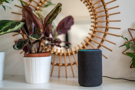 VIENNA,AUSTRIA - April 4 2019: Amazon Alexa Echo Plus on a white table with green plants in the background Stok Fotoğraf