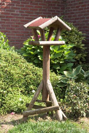 A bird feeding house photo