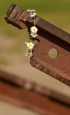 railtrack: A flowerchain on a broken railtrack Stock Photo