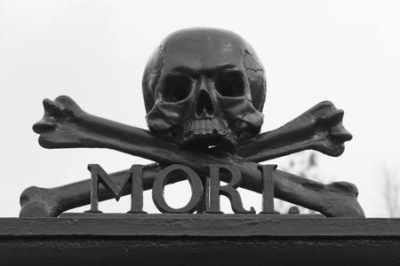 A skull at a graveyard (Memento Mori)