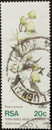 RSA - 1981: Stamp printed in the Republic of South Africa shows a picture of an orchid, 1981 photo