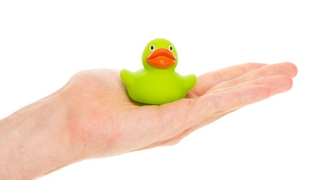 squeak: Green rubber duck on a hand of an adult man