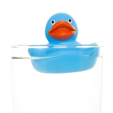Blue duck in a glass of water photo