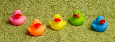 rubbery: Rubber ducks isolated on a green towel Stock Photo