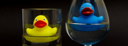 Blue rubber duck in a cognacglass and a yellow one in a whiskyglass photo