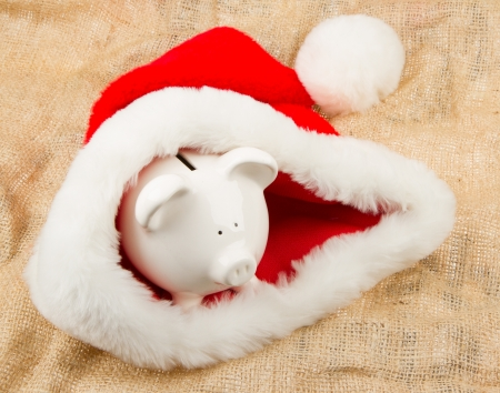 Piggybank guarding Santa photo