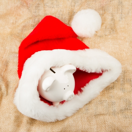 Piggybank guarding Santa Stock Photo - 15600425