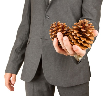 Man in grey suit is holding two pine cones, isolated photo