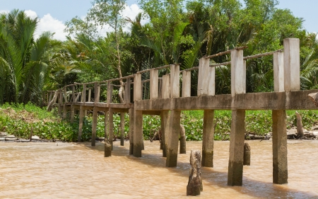 Concrete bridge into the jungle, mekong delta Vietnam photo
