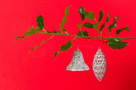 silver bells: Old silver bells hanging in Butchers broom, isolated