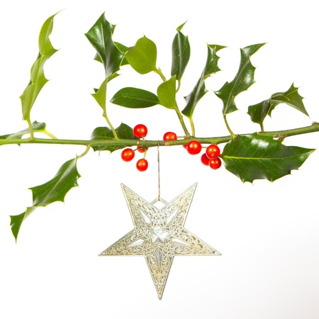 Very old silver star hanging from a twig (butchers broom), isolated photo