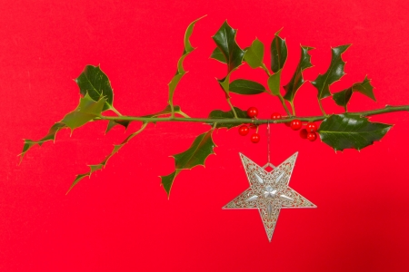 Old silver star hanging in Butchers broom, isolated photo