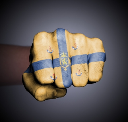 Front view of punching fist on gray background, banner of the kingdom of the Netherlands Stock Photo - 17632675