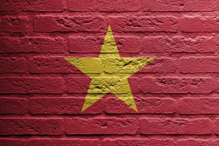 Brick wall with a painting of a flag isolated, Vietnam photo