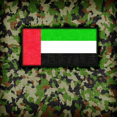 Amy camouflage uniform with flag on it, UAE photo