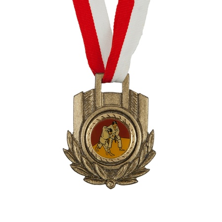 Old medal isolated on a white background, judo photo