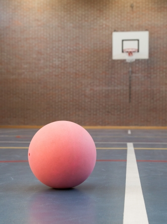 contestation: Pink ball on blue court at break time, school gym