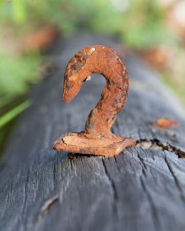 Rusted steel hook on a wooden pole photo