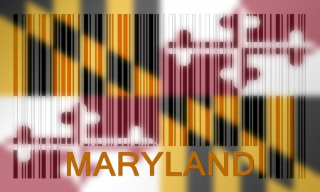 Flag of the US state of Maryland, painted on barcode surface photo