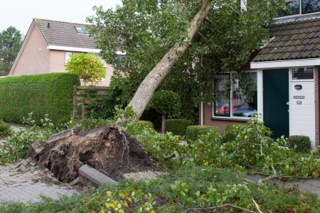 LEEUWARDEN, NETHERLANDS, OKTOBER 28, 2013  Massive storm hit the north of the Netherlands, total damage has been estimated at over 100 million euro