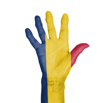 Palm of a woman hand, painted with flag of Chad Stock Photo