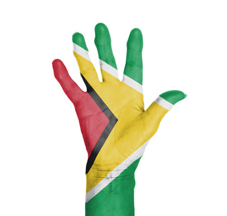 Palm of a woman hand, painted with flag of Guyana photo