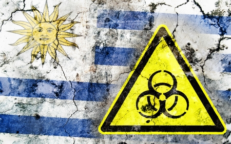 Old cracked wall with biohazard warning sign and painted flag, flag of Uruguay Stock Photo - 24226320