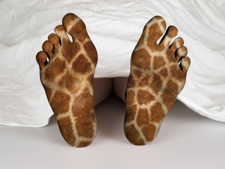 Dead body under a white sheet, concept of sleeping or death, giraffe print photo