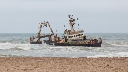 ナミビアのスケルトン海岸でヘン...