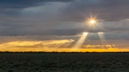 Picturesque scene of Etosha national park over sunset, Namibia photo