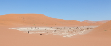 View over the deadvlei with the famous red dunes of Namib desert, Deadvlei (Sossusvlei), Namibia photo