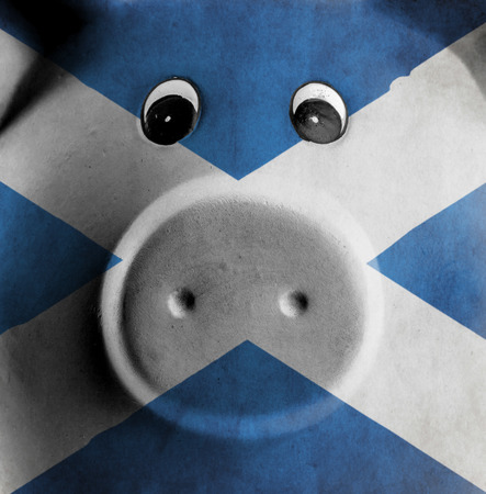 scot: Ceramic piggy bank with painting of national flag, Scotland