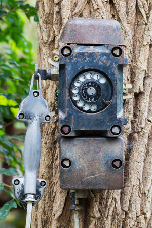 Old black telephone hanging on a tree photo