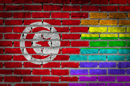 lesbo: Dark brick wall texture - coutry flag and rainbow flag painted on wall - Tunisia