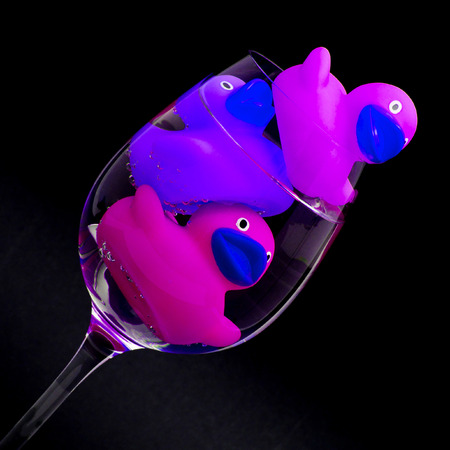 Pink and purple rubber ducks in wineglasses, dark background photo