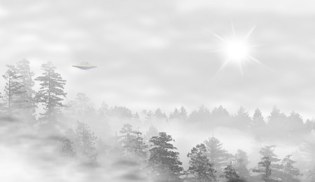 misty forest: UFO in a landscape of misty forest at sunrise Stock Photo