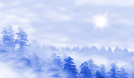 misty forest: Landscape of misty forest at sunrise - concept of mystery - blue Stock Photo