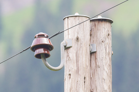 mains: Old electric pillar in a Swiss forrest Stock Photo