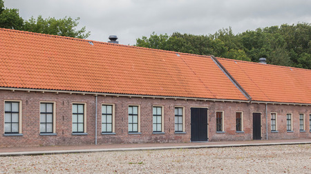 thatcher: Very old red roof on dutch style house Stock Photo