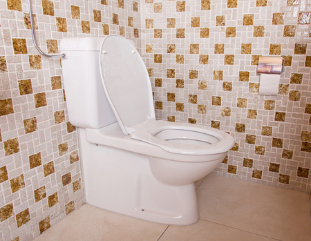 80s: Old clean toilet with old tiles (80s)