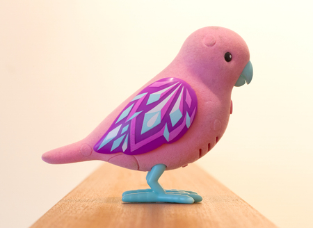 automat: Mechanical bird for children, pink toy isolated