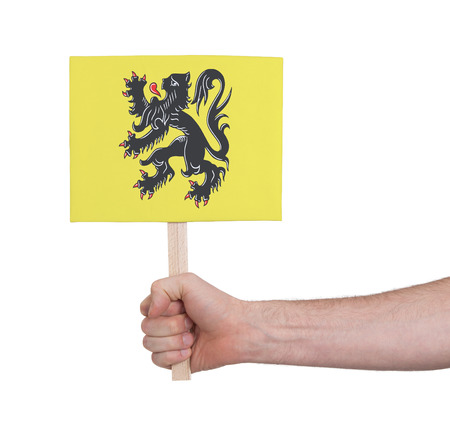 flanders: Hand holding small card, isolated on white - Flag of Flanders