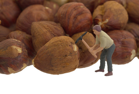 food processing: Miniature worker working with hazelnuts - Concept of food processing
