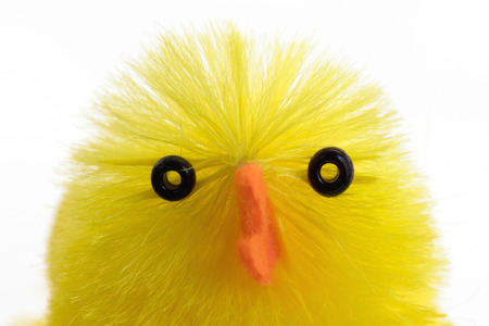 easter chick: Single easter chick, isolated on a white background, close-up Stock Photo