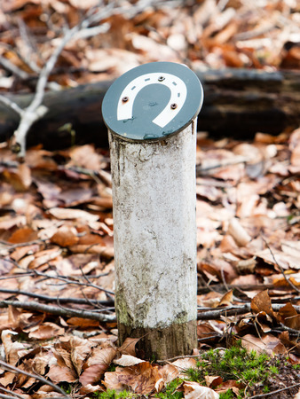 wooden trail sign: Sign for a horsetrack in a dutch forrest
