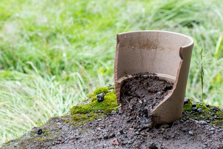Stil: Broken flower pot, stil filled with dirt Stock Photo