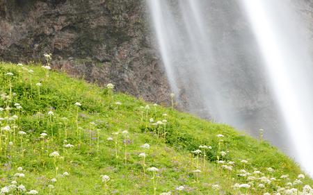icelandic: The most famoust Icelandic waterfall - Seljalandsfoss - Detail Stock Photo