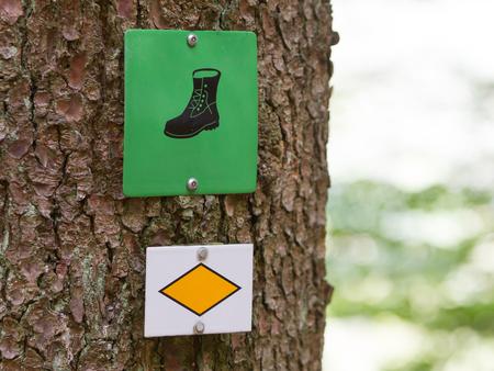 Walking path sign in a tree in Germany - Schwarzwald
