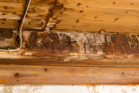 Water damaged ceiling and wall, leakage in an old building